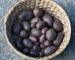Basket of Shetland Black Potatoes